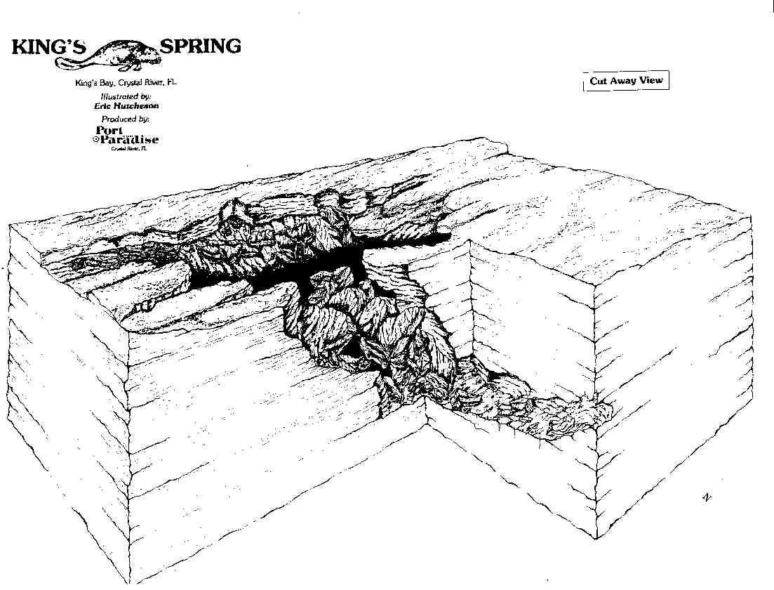 Crystal River Springs - Florida map crystal river