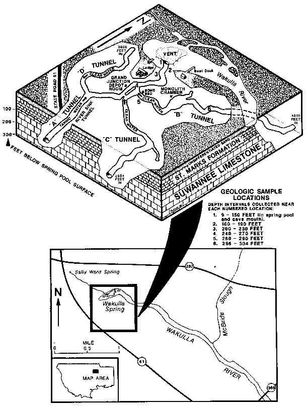 wakulla springs Diagram of a Hoodoo click here for wakulla springs cave overview